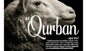 Qurban apa itu